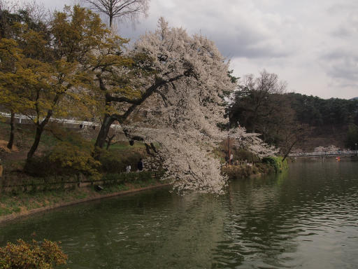 20140420・長野03-16