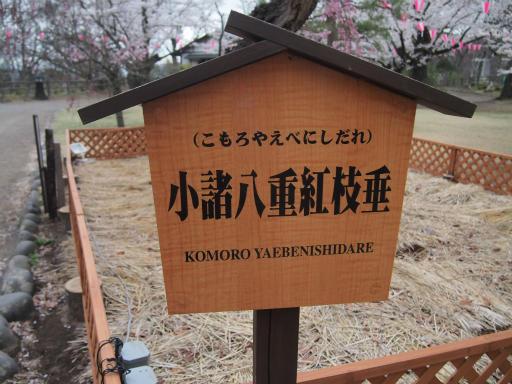 20140421・長野10-03