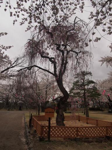20140421・長野10-04
