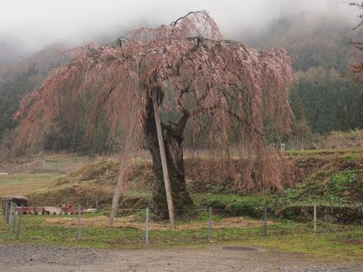 20140421・長野11-15・赤和集落・大