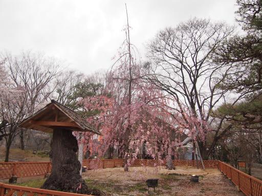 20140421・長野19-22