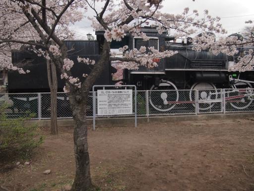 20140421・長野13-05・懐古園駐車場