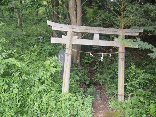 20140713・浅間山3-05・オミタラシ