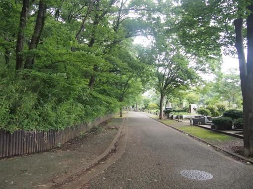 20140713・浅間山3-13