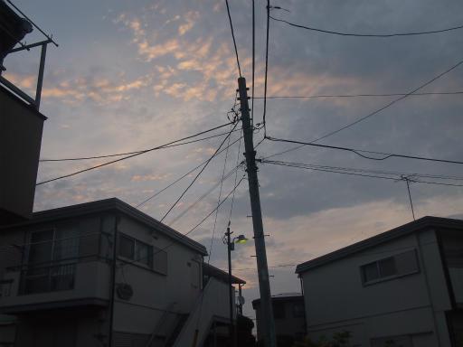 20140814・夏の朝02