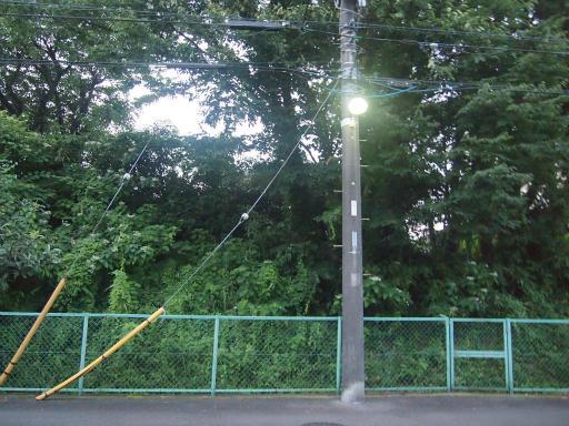 20140814・夏の朝01