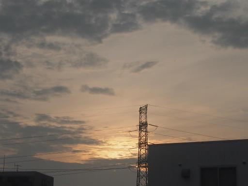 20140814・夏の朝22