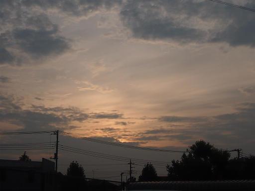 20140814・夏の朝21