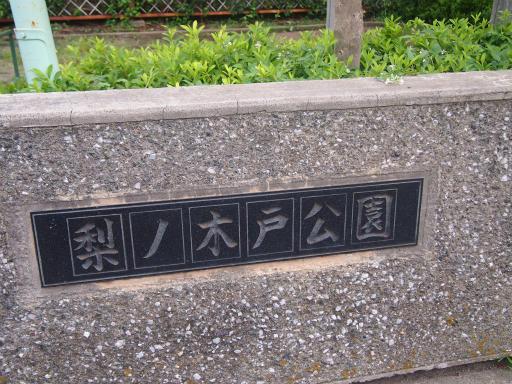 20140814・夏雑草09