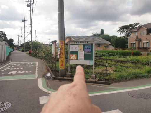 20140830・トトロ1-05