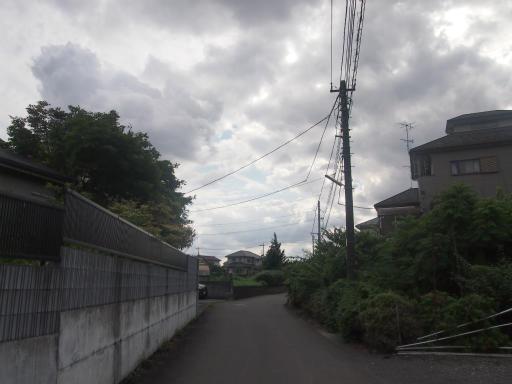 20140830・トトロ1-10