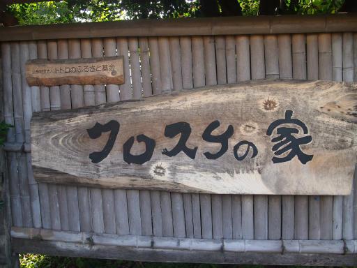 20140830・トトロ1-24