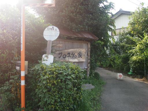 20140830・トトロ1-23