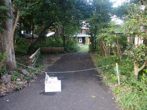 20140830・トトロ3-17