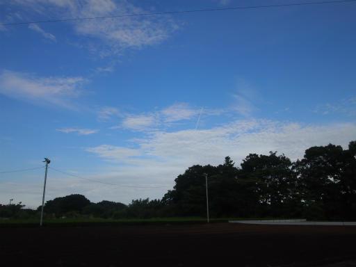 20140830・トトロ4-02