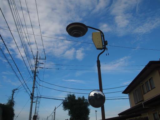 20140830・トトロ4-01