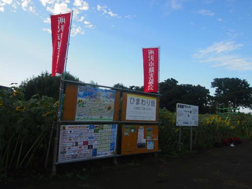 20140830・トトロ4-07