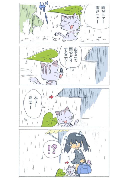 shelter03.jpg
