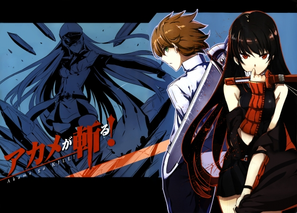 anime_wallpaper_Akame_ga_Kill_201406291.jpg