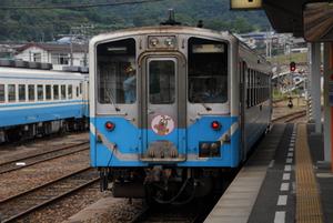 Koyosi7