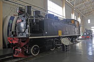 Btb17