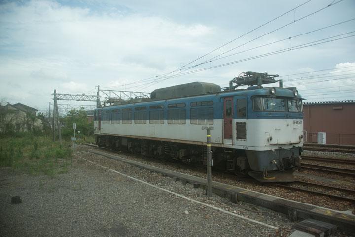 Hok1b11