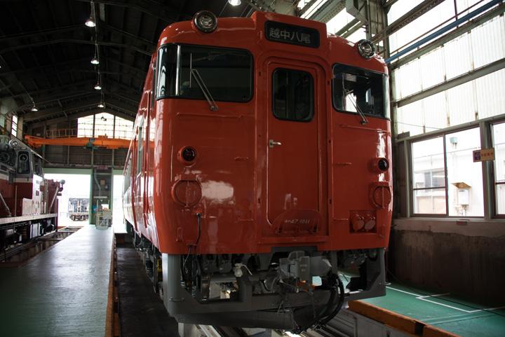 Matp14a12