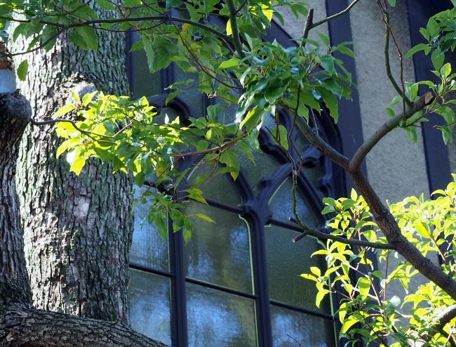 チャペルの窓