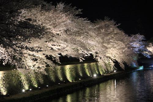 yozakura140404