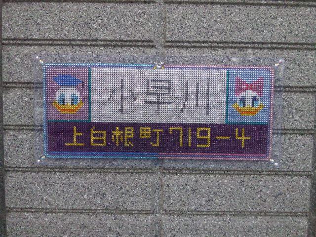 DSC_0911ac.jpg