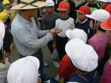 稲刈14-14