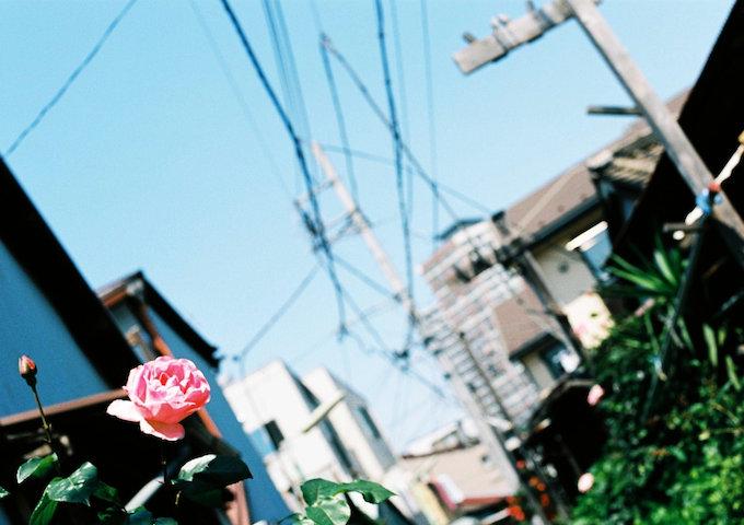 20140526.jpg