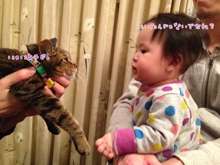 嵐丸 2014.2.23-1