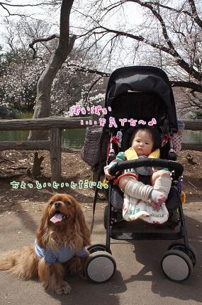 嵐丸 2014.3.30-4