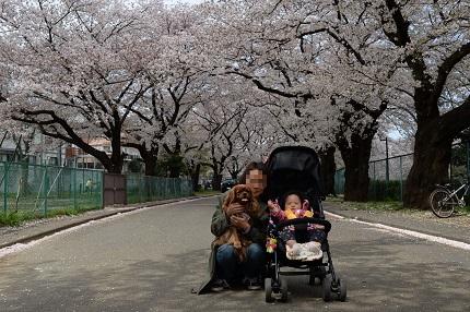 嵐丸 2014.4.5-15