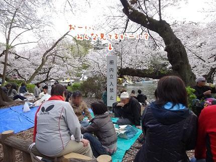 嵐丸 2014.4.5-13