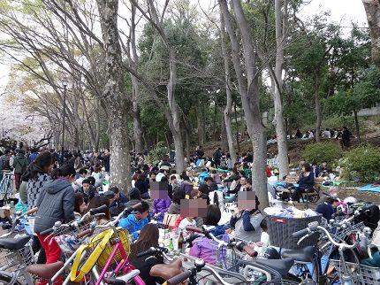 嵐丸 2014.4.5-12