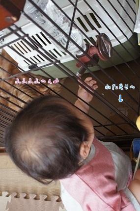嵐丸 2014.5.15-3