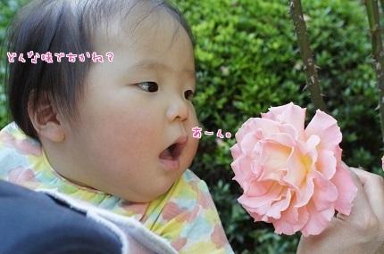 嵐丸 2014.5.22-8
