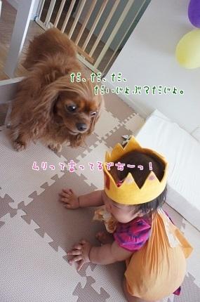 嵐丸 2014.6.3-6