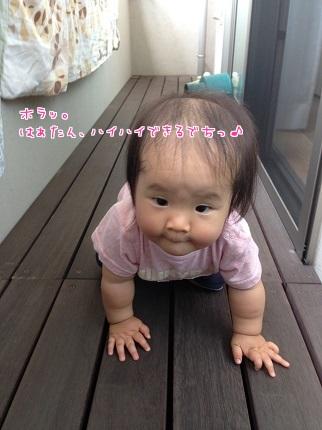 嵐丸 2014.7.9-4