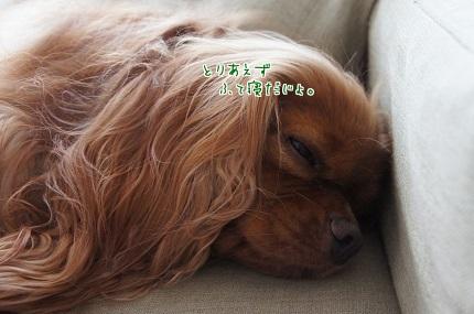 嵐丸 2014.7.24-2