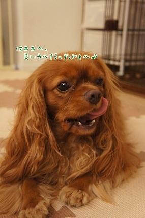 嵐丸 2014.7.24-11
