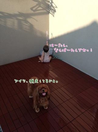 嵐丸 2014.7.27-4