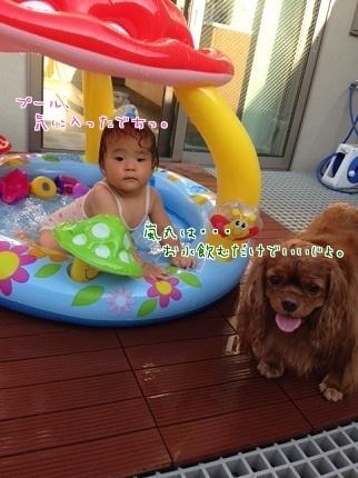 嵐丸 2014.7.27-6