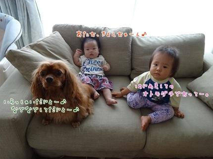 嵐丸 2014.8.29-2