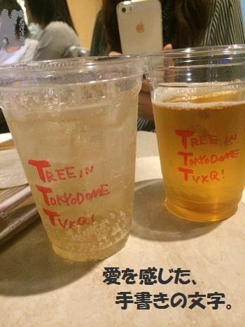 東京ドームカップ
