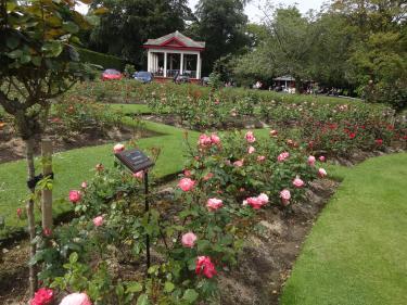 Botanic Rose Garden
