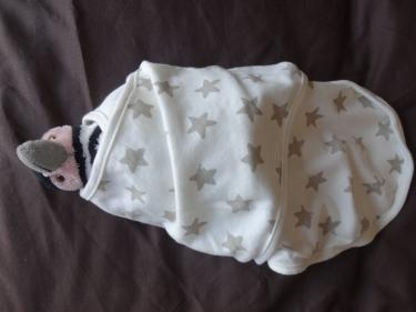 Swaddle penguin2