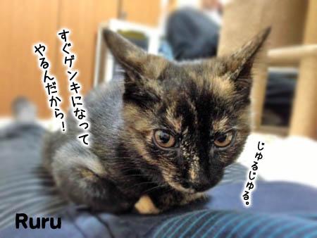 るる2014.3.4